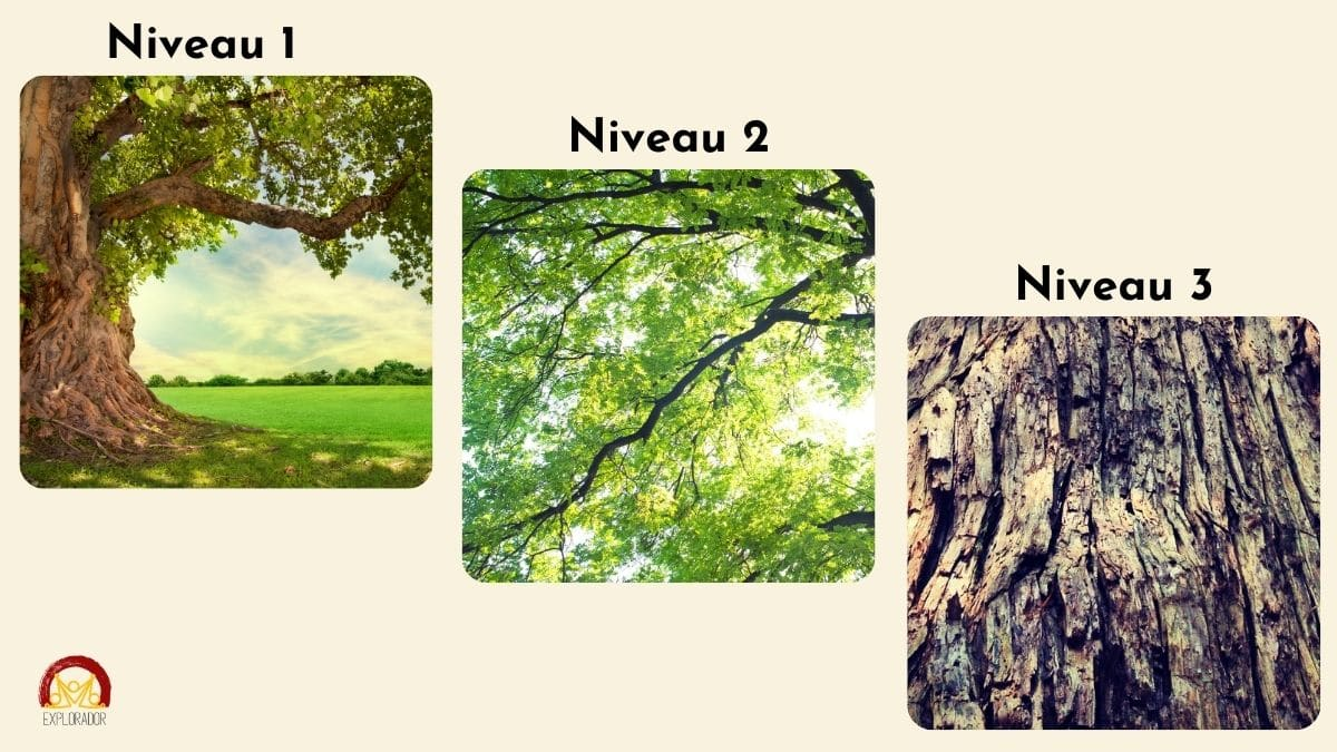 chasse au tresor photos niveaux differents
